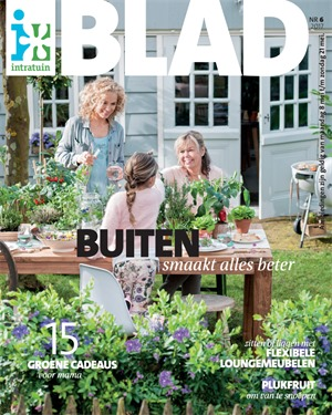 Intratuin folder van 08/05/2017 tot 21/05/2017 - Blad