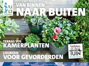 Intratuin folder van 04/06/2018 tot 10/06/2018 - Folder begin juni