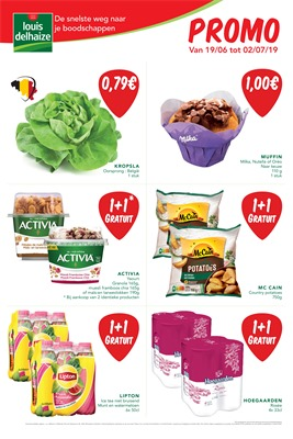 Louis Delhaize folder van 19/06/2019 tot 02/07/2019 - Maandpromoties