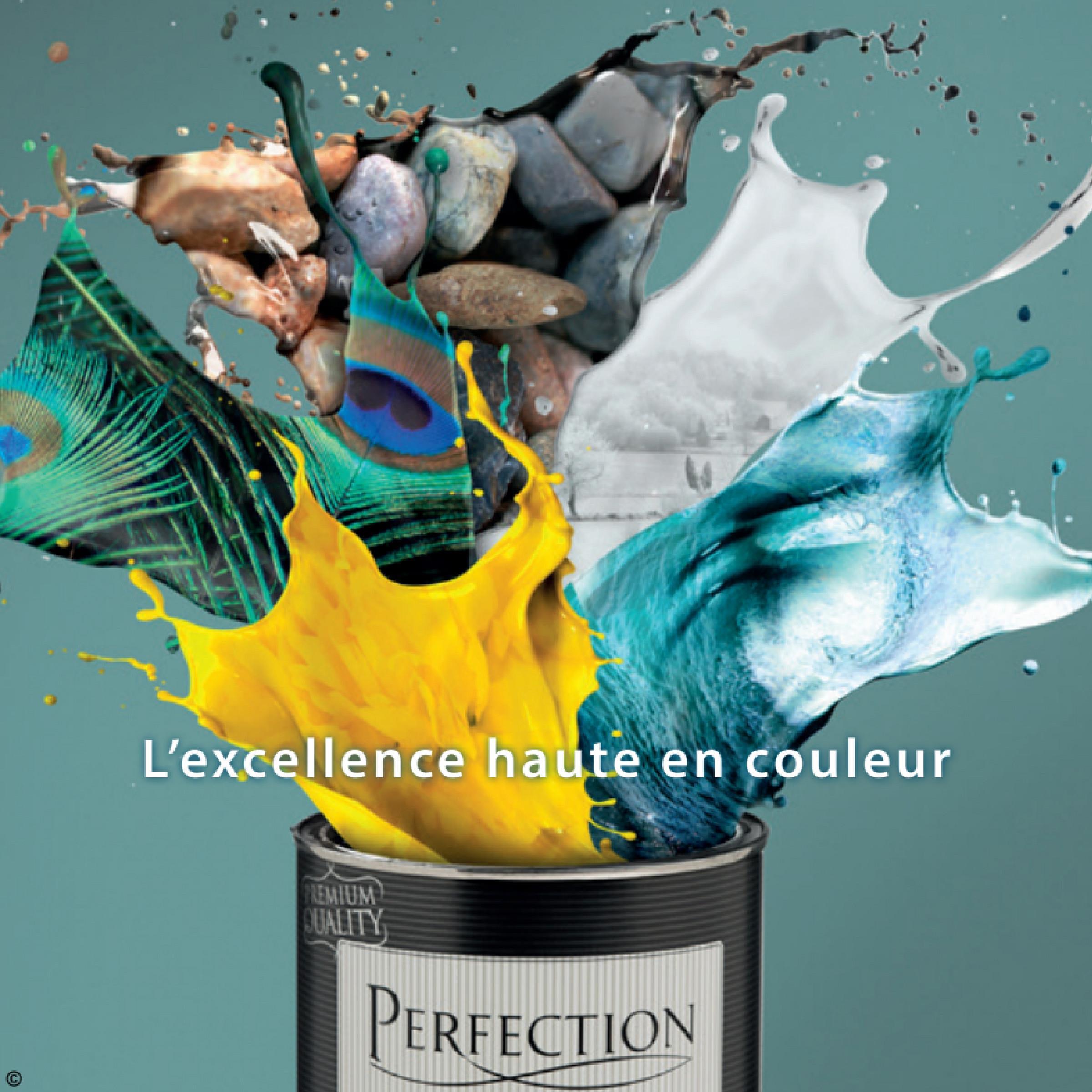L'excellence haute en couleur PERFECTION