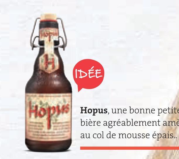 Folder Spar du 29/06/2018 au 31/07/2018 - IDÉE Hopus, une bonne petite bière agréablement am au col de mousse épais...