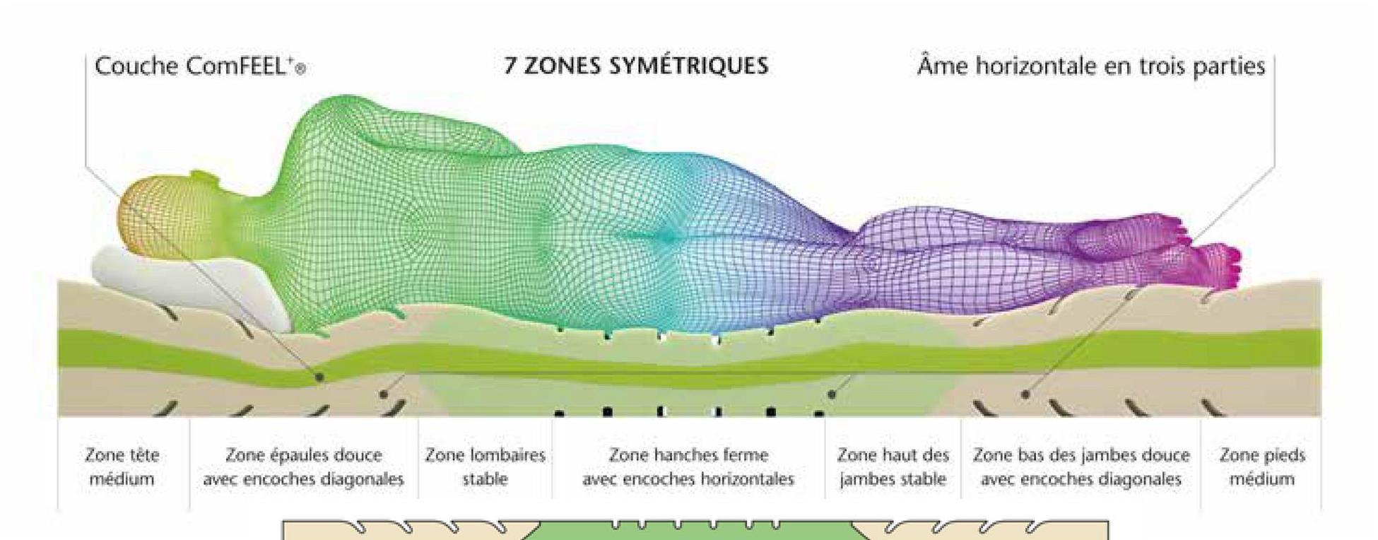 Couche ComFEEL 7 ZONES SYMÉTRIQUES Ame horizontale en trois parties Zone tête médium Zone épaules douce avec encoches diagonales Zone lombaires stable Zone hanches ferme avec encoches horizontales Zone haut des Zone bas des jambes douce jambes stable avec encoches diagonales Zone pieds médium - -