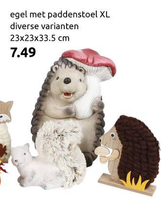 egel met paddenstoel XL diverse varianten 23x23x33.5 cm 7.49