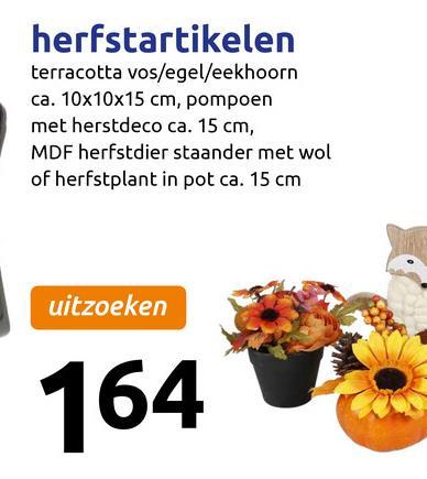 herfstartikelen terracotta vos/egel/eekhoorn ca. 10x10x15 cm, pompoen met herstdeco ca. 15 cm, MDF herfstdier staander met wol of herfstplant in pot ca. 15 cm uitzoeken 164