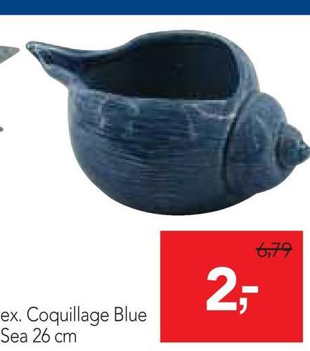 6,79 2: ex. Coquillage Blue Sea 26 cm