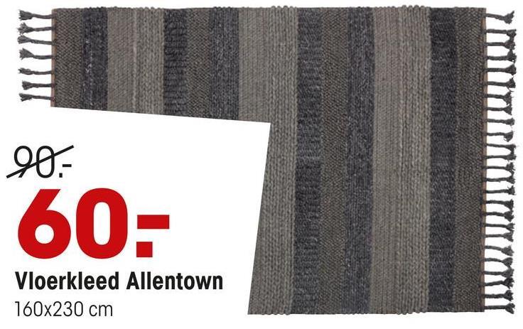 90- IMITOIMITI 60- Vloerkleed Allentown 160x230 cm