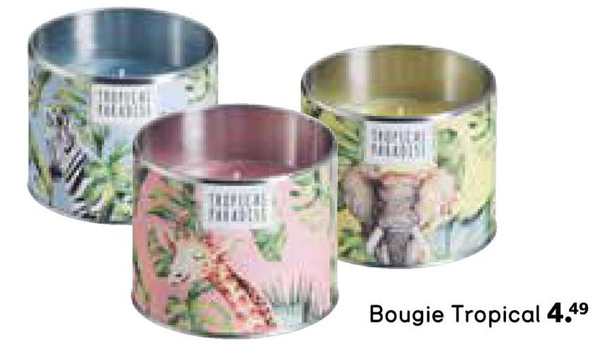 Bougie Tropical 4.49