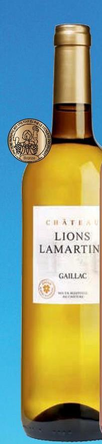 CHATE LIONS LAMARTIN GAILLAC