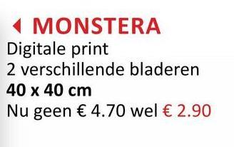 MONSTERA Digitale print 2 verschillende bladeren 40 x 40 cm Nu geen € 4.70 wel € 2.90