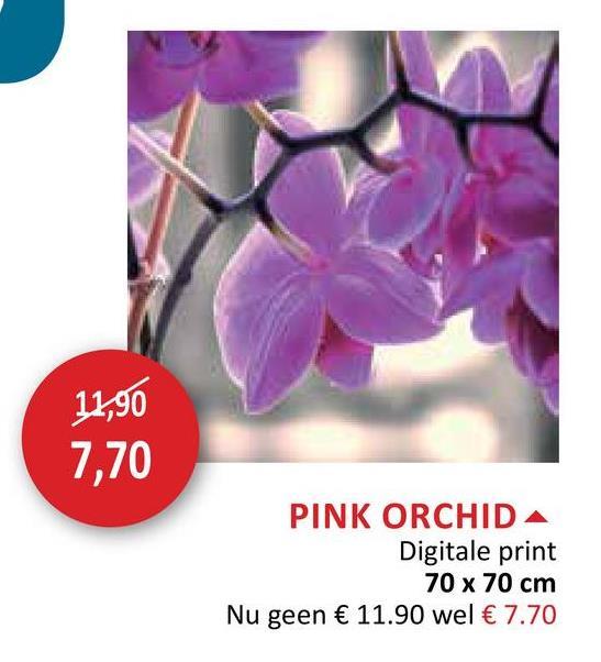 11,90 7,70 PINK ORCHIDA Digitale print 70 x 70 cm Nu geen € 11.90 wel € 7.70
