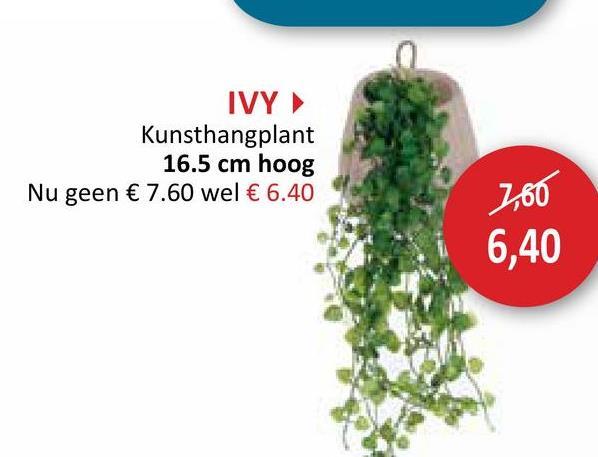IVY Kunsthangplant 16.5 cm hoog Nu geen € 7.60 wel € 6.40 160 6,40