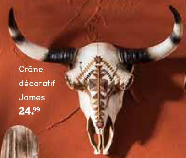 Crâne décoratif James - noir/brun - 40x34x14 cm - Leen Bakker Le crâne décoratif James de40x43x14 cm est noir/brun. Il est fait de polyrésine. Cette jolie décoration va bien partout. Vous mettez ou suspendez le crâne où vous voulez.