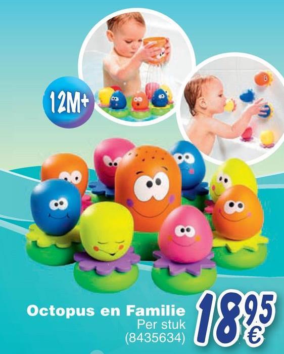 12M+ Octopus en Familie Per stuk (8435634)