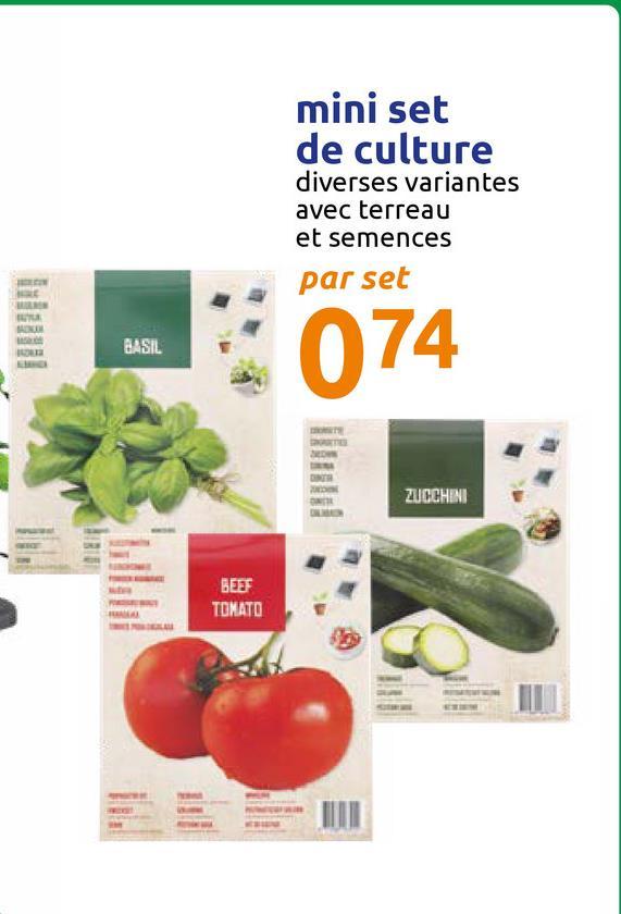 mini set de culture diverses variantes avec terreau et semences par set BASIL 074 ZUCCHINI BEEF TOMATO