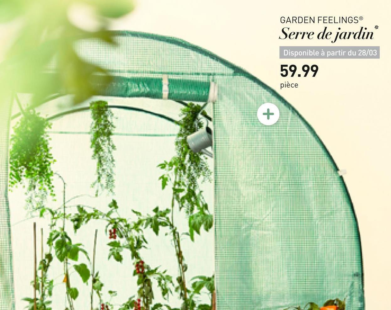 GARDEN FEELINGS® Serre de jardin Disponible à partir du 28/03 59.99 pièce