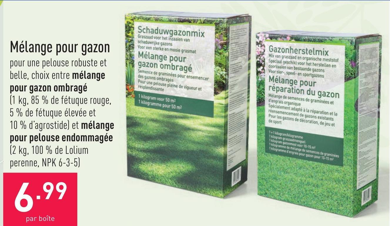 Mélange pour gazon pour une pelouse robuste et belle, choix entre mélange pour gazon ombragé (1 kg, 85 % de fétuque rouge, 5 % de fétuque élevée et 10 % d'agrostide) et mélange pour pelouse endommagée (2 kg, 100 % de Lolium perenne, NPK 6-3-5)