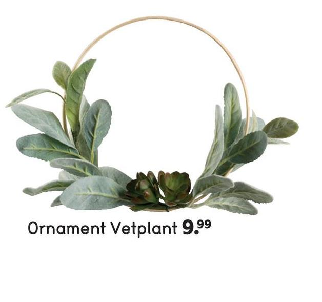 Ornament Vetplant 9.99