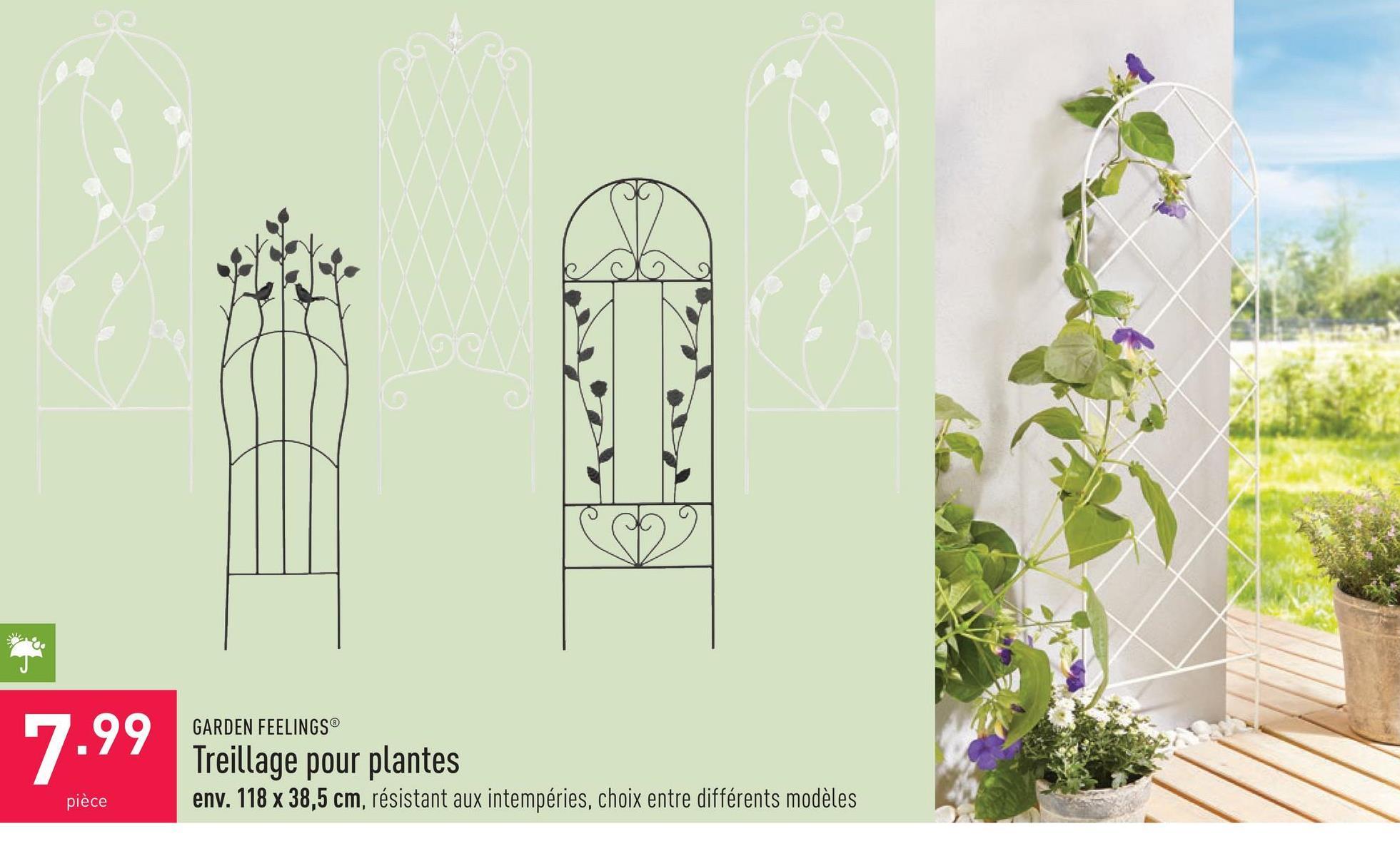 Treillage pour plantes env. 118 x 38,5 cm, résistant aux intempéries, choix entre différents modèles