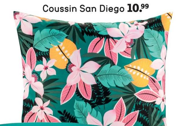 Coussin San Diego 10.99