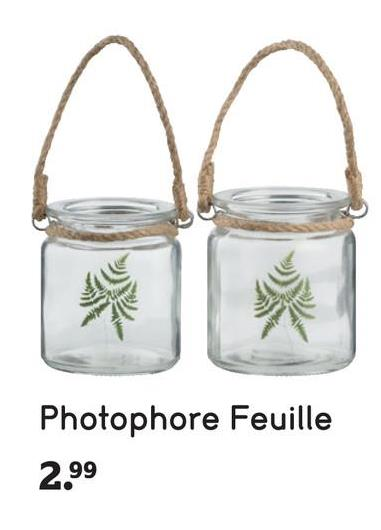 Photophore Feuille 2.99