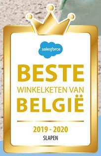 salesforce BESTE BELGIË WINKELKETEN VAN 2019-2020 SLAPEN