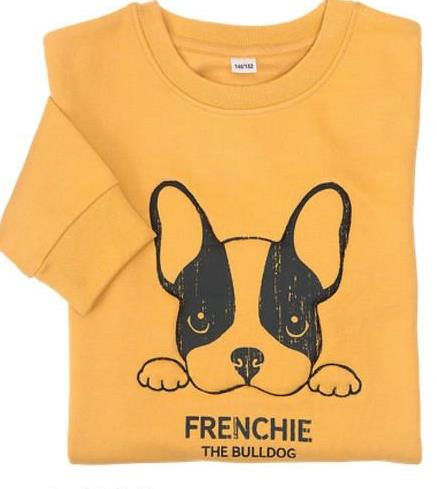 FRENCHIE THE BULLDOG