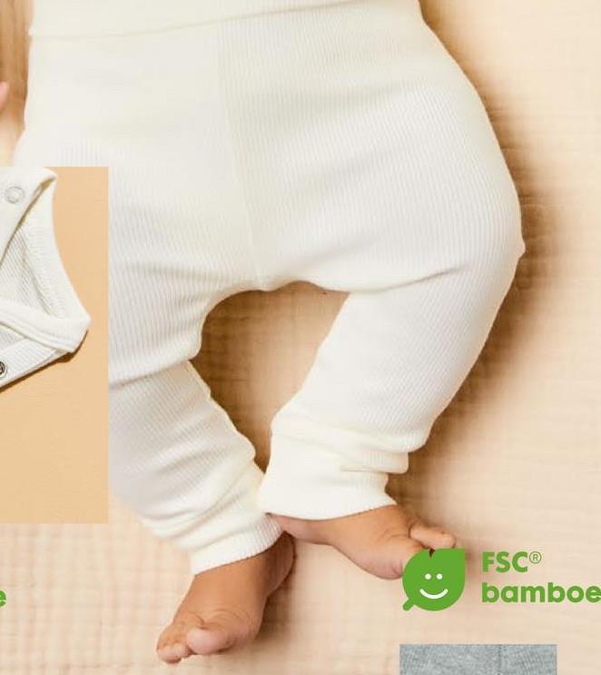 FSC® bamboe
