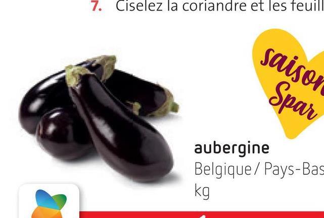 7. Ciselez la coriandre et les feuill saison Spar aubergine Belgique / Pays-Bas kg