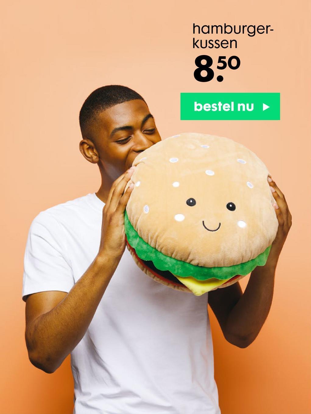 hamburger- kussen 850 bestel nu