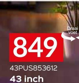 Draai voet 849 43PUS853612 43 inch
